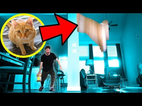 DROPPING HIS CAT OFF THE BALCONY PRANK!! *GONE WRONG*