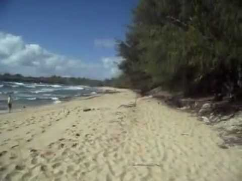 Hiking to an awesome beach in Hawaii—Mahaulepu Beach, Kauai