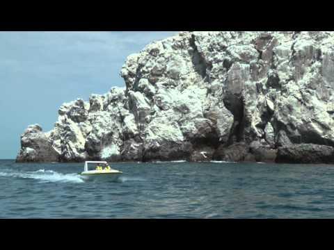 Marina El Cid's New Harbor Tour