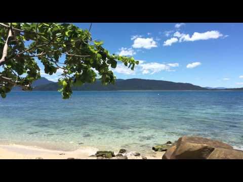 Fitzroy Island Australia 4k UHD Living Screensaver