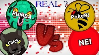 Agar.io PUMBA & ChicK Vs NEIKER ? / REAL or FAKE ?!