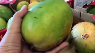 DITL Vlog 100718 Asian Market Neighborhood Dinner OOTD Nighttime Routine