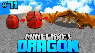 Goldener Drachen LEBENZYKLUS?! - Minecraft Dragon #71 [Deutsch/HD]
