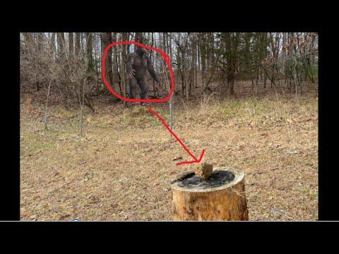bigfoot-sasquatch-grants-permission!