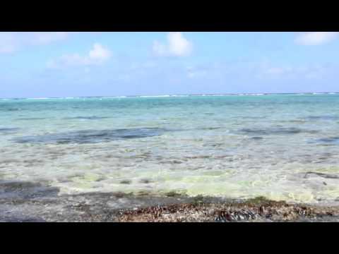 Grand Cayman Island on the Caribbean Sea - HD