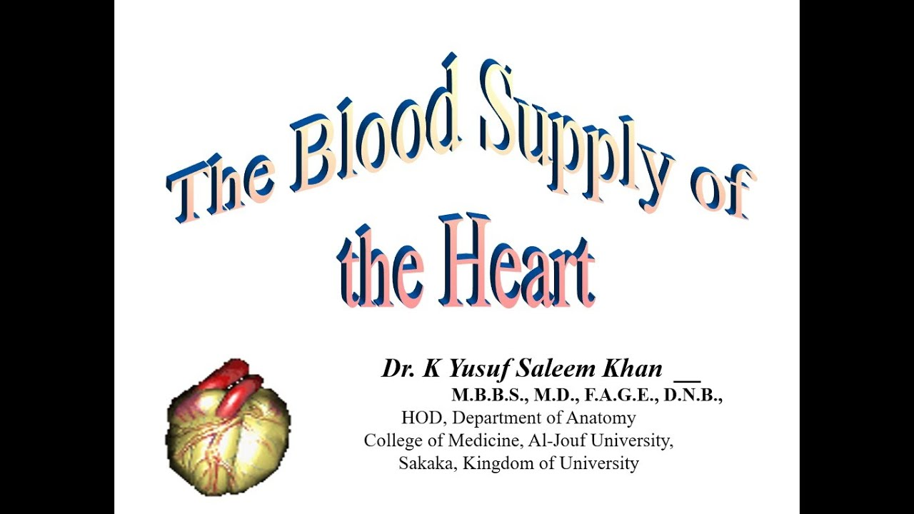 Blood supply of the Heart (Anatomy Lecture) ......... by Dr Yusuf ...