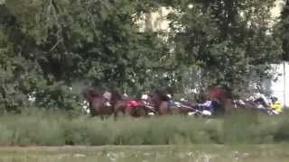Бега-Заезд рысаков 3 лет-Красноярск 29.08.2015(Лошади-Horse–Animal-racing-к...