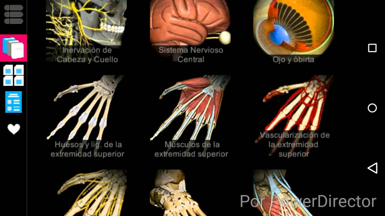 Estudia anatomía con Anatomy learning 3D(Android) |Gratis - YouTube