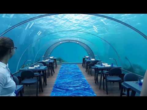 5.8 Undersea Restaurant at Hurawalhi Maldives Resort