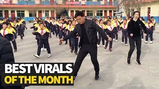 Top 20 Viral Videos of the Month - January  from