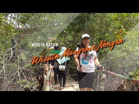 Wisata Kekinian Di Batam Hutan Mangrove Nongsa