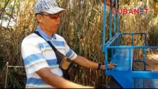 "Los ""Riquimbilis"" resuelven el problema del transporte en Cuba"