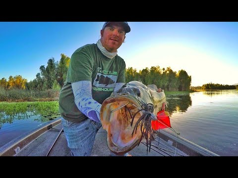 Buzzbaits Tricks You Didn't Even Know To Try!