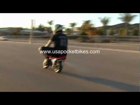 Cag Minibike - Mini Pocket Bikes, minibikes, pocketbikes, mini bikes - 47cc 2-stroke