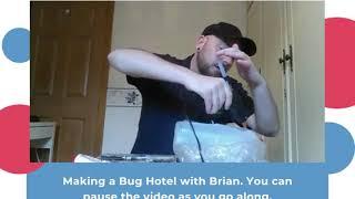 Brian's Bug Hotel