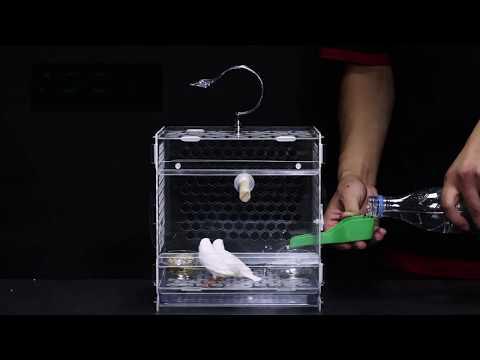 best-mini-acrylic-birdcage-in-2018