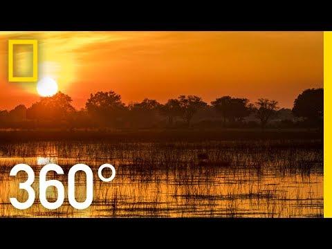 The Okavango After Dark in 360 – Ep. 3 | The Okavango Experience