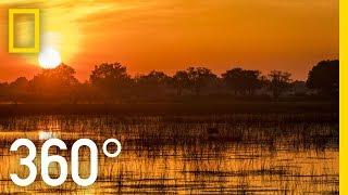 The Okavango After Dark in 360 - Ep. 3 | The Okavango Experience
