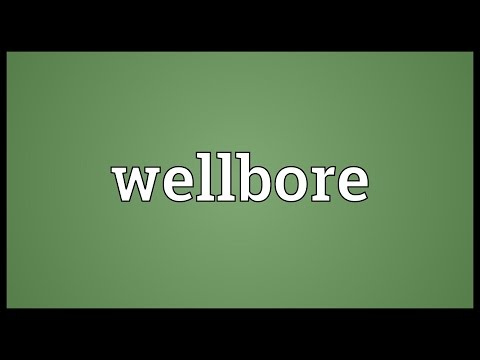 Wellbore Meaning