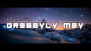 Download Mp3 Nicolea Guta || Greseala Mea || Famzlyrics