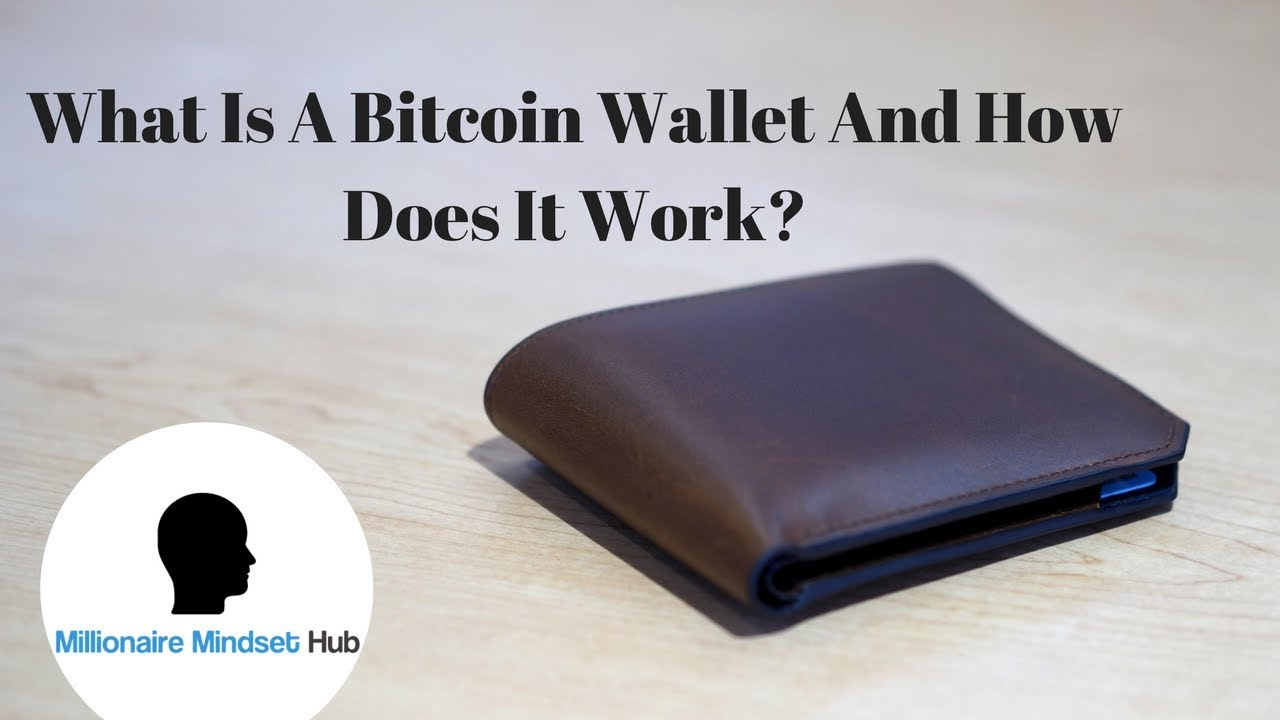 what does a bitcoin wallet look like