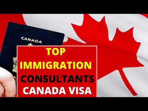How To Choose Right Immigration Consultants For Canada Visa By Canadian Shaan
