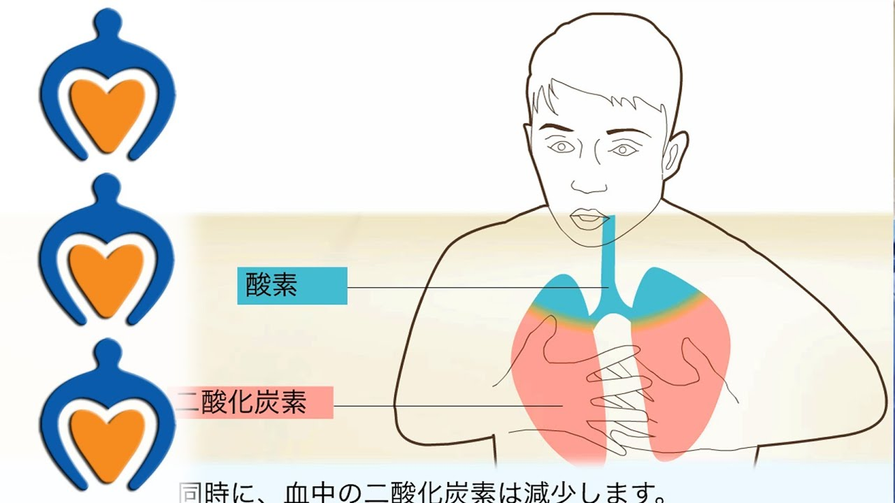 過呼吸 ー その原因と治療法 Hyperventilation -- Causes and treatment of ...