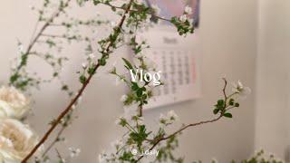 Vlog 봄 가득 담은 일상 / LP&턴테이블 …