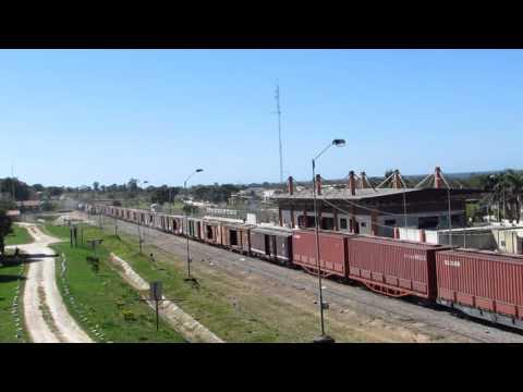 Tren de carga - Pto.Quijarro - Bolivia I