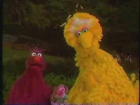 Sesame Street Jam Alternate Scenes Youtube