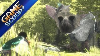 Is This the Last Delay for The Last Guardian? - Game Scoop! 405