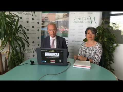 Radio Veneto Agricoltura - Foresta del Cansiglio