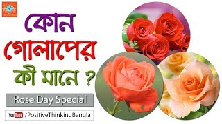 What is the meaning of a rose? (Rose Day Special) | Positive Thinking [Bangla]