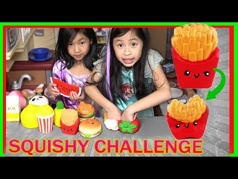 SQUISHY FOOD CHALLENGE! Guess the Squishy Challenge (FunTV)