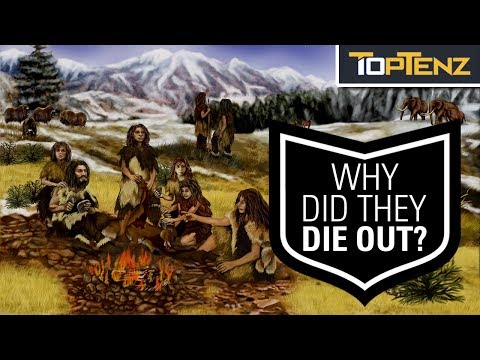 Best Theories About WHY the Neanderthals DIED OUT