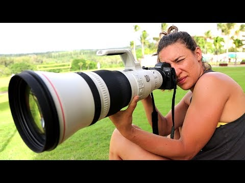 Canon EOS R Review: Better than you think!