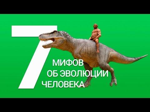 7 МИФОВ ОБ ЭВОЛЮЦИИ ЧЕЛОВЕКА