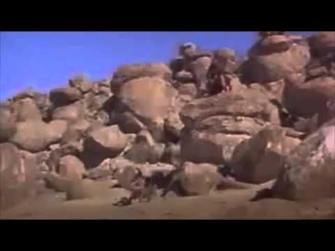 Cyberdelia Trailers