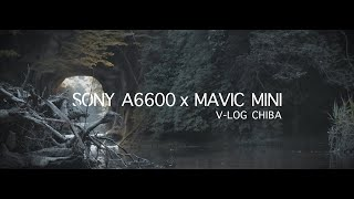 【VLOG】SONY A6600 x Mavic mini x Chiba