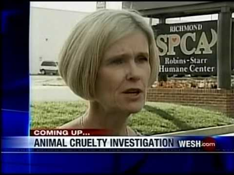 WESH-TV 11pm News, August 27, 2009