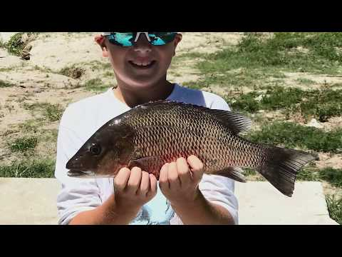 Hot Bites | August 31 Fishing Report