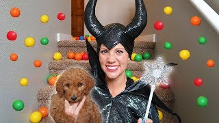 Maleficent Uses MAGIC And Gets A Cute Puppy!