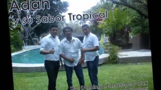 Adán y su Sabor Tropical Par de anillos, yolanda , Zanatepec Oax 2015