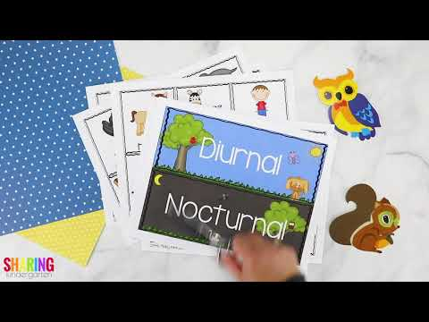 Nocturnal & Diurnal Animals