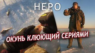 Окунь клюет один за одним Неро. Ростов. Зима 2020