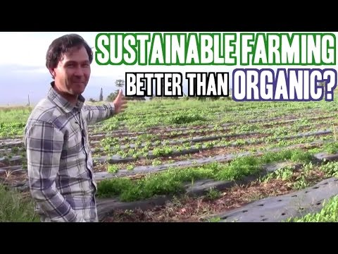 How Sustainable Farming Can Be Better than Organic Agriculture