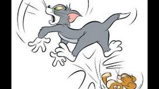 [搞笑影片]傑利鼠追湯姆貓