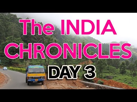 Kochi to Munnar By Local Bus - Travel India