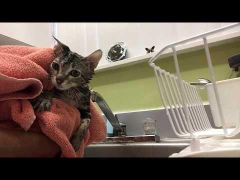 Effy Girl Gets A Bubble Bath