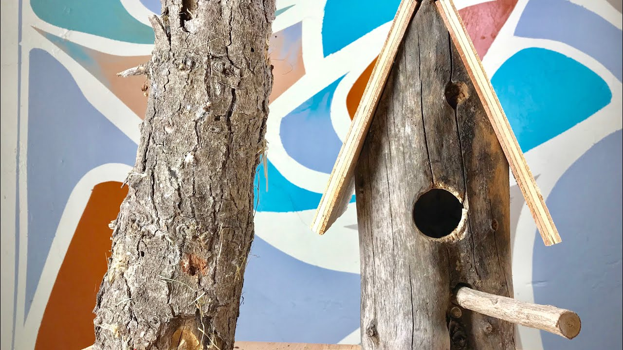 COMO HACER CASA DE PAJARITO CON UN TRONCO EN 10 MINUTOS / how to build bird house log in 10 minutes